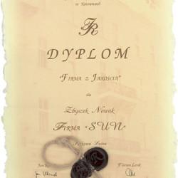 dyplom3-big